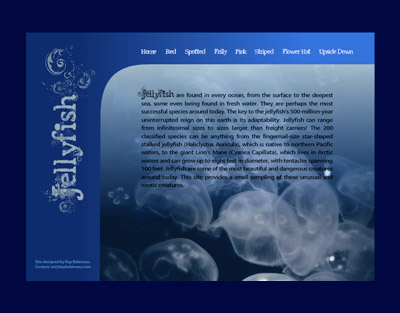 Screen shot of the home page of a website on Jellyfish.